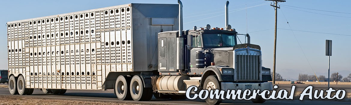 Commercial Auto / Trucking