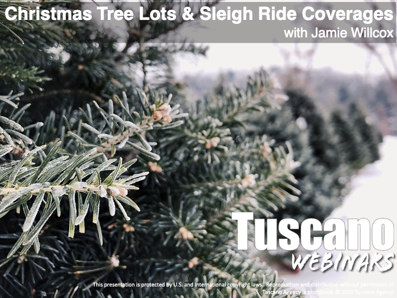 Christmas Tree Lots & Sleigh Ride Coverages