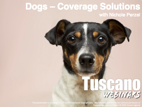 Dogs - Coverage Solutions
