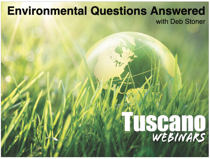Environmental Pollution Questions Answered
