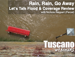 Rain, Rain, Go Away: Let's Talk Flood